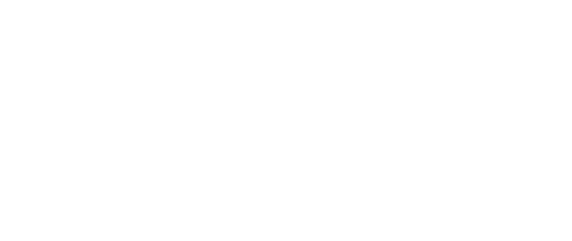 Internet-Heini